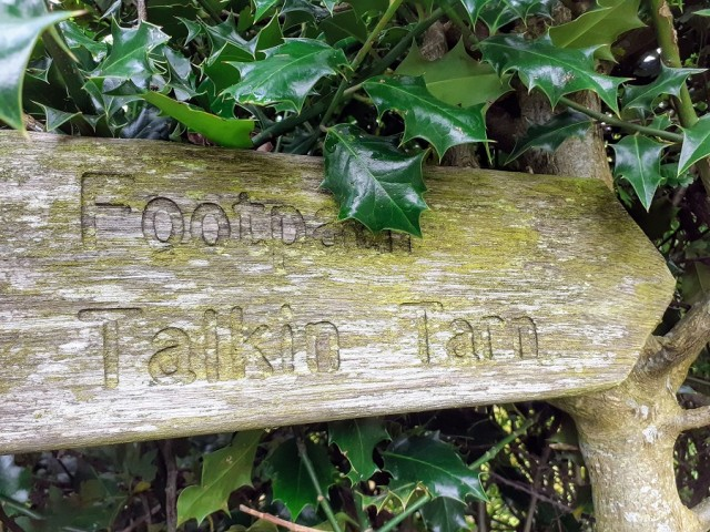 Our walk from New Mills Trout Farm, Brampton to Talkin Tarn Country Park