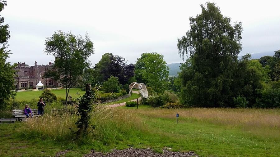 Birds of Prey at Muncaster Castle