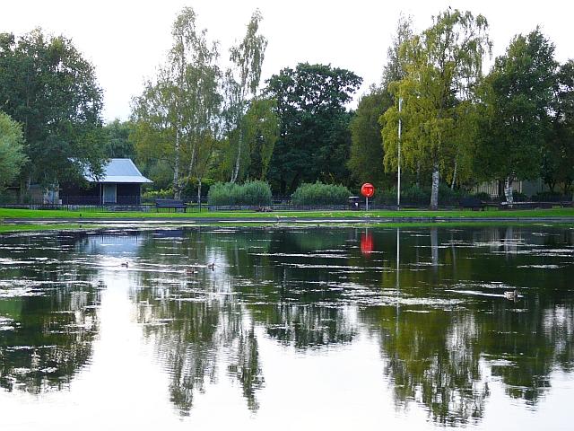 Hammond's Pond