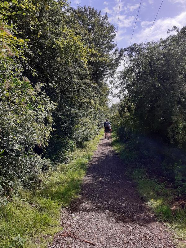 Walk to Talkin Tarn